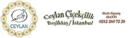 Beşiktaş Çiçekçi - Beşiktaş Çiçek Siparişi